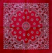 Red Railroad Bandana