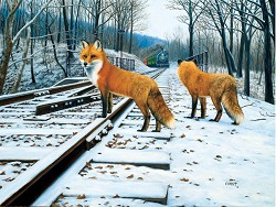 Fox Tracks-500 Piece Puzzle